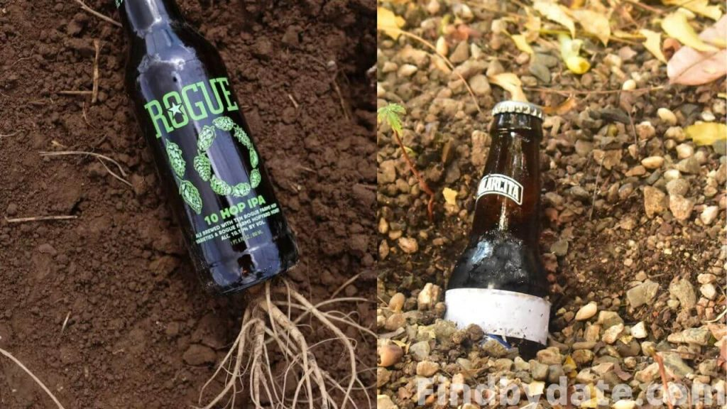 Burying Beers in the earth