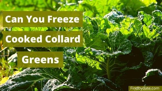 can you freeze cooked collards