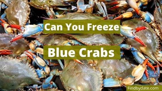can you freeze cooked blue crabs