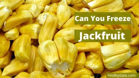 All about freezing jackfruit