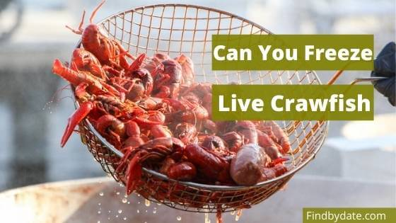 how to freeze crawfish